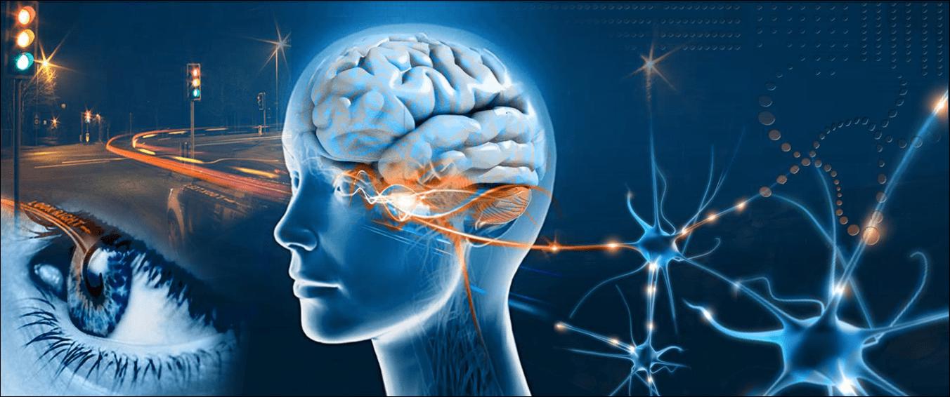 EMDR Tedavisinin Nörolojik Etkileri
